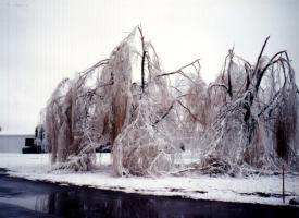 1991 Ice Storm